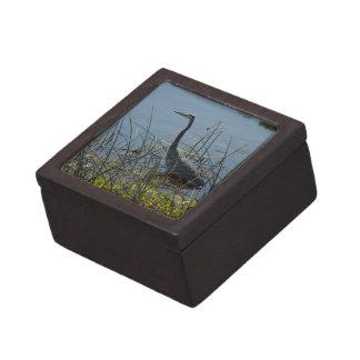 Great Blue Heron Viera Wetlands Premium Gift Box