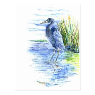 Great Blue Heron Wades in the Marsh Postcard