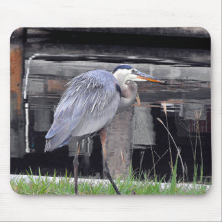 Great Blue Heron Waiting Mouse Pad