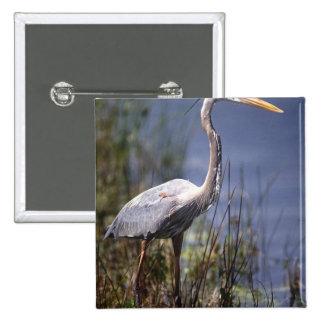 Great Blue Heron water bird found throughout Button