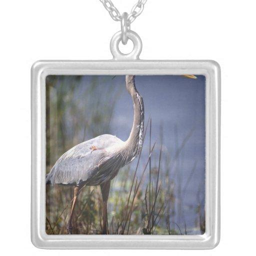 Great Blue Heron water bird found throughout Jewelry