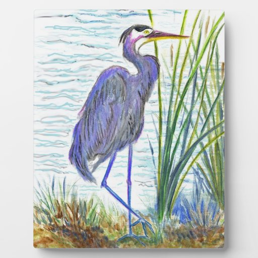 Great Blue Heron - Watercolor Pencil Photo Plaques