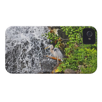 Great Blue Heron & Waterfall Wildlife Photo Case