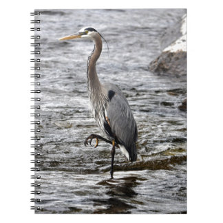 Great Blue Heron Wildlife Birdlover Photo Notebook