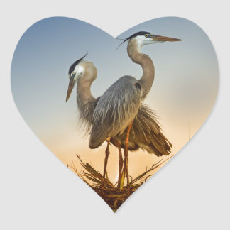 Great Blue Herons at Sunrise Heart Sticker