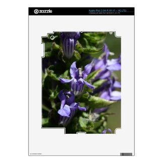 Great Blue Lobelia (Lobelia siphilitica) iPad 3 Skins
