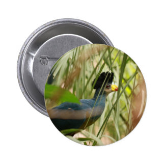 Great Blue Turaco Buttons
