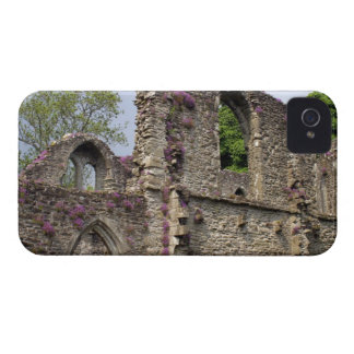 Great Britain, United Kingdom, Scotland. Ruins 2 iPhone 4 Cases
