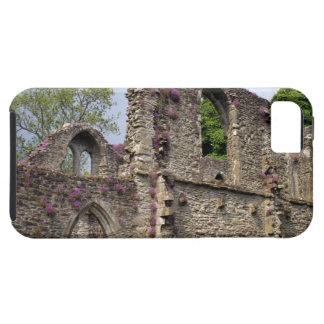 Great Britain, United Kingdom, Scotland. Ruins 2 iPhone 5 Covers