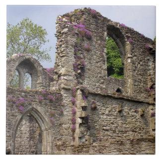 Great Britain, United Kingdom, Scotland. Ruins 2 Tiles
