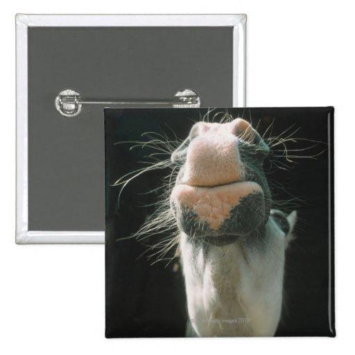 Great Britian Pinback Button