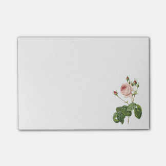 great cabbage-leaved rose by Redouté Post-it Notes