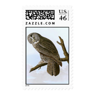 Great Cinereous Owl Stamp
