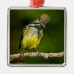 Great Crested Flycatcher eating Christmas Tree Ornament