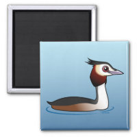 Great Crested Grebe Square Magnet