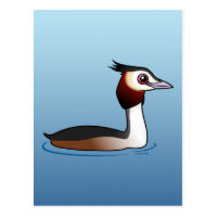 Great Crested Grebe Postcard