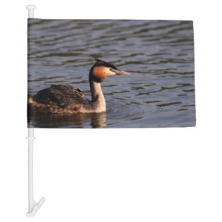 Great crested grebe with chick on back car flag