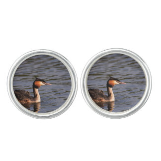 Great crested grebe with chick on back cufflinks