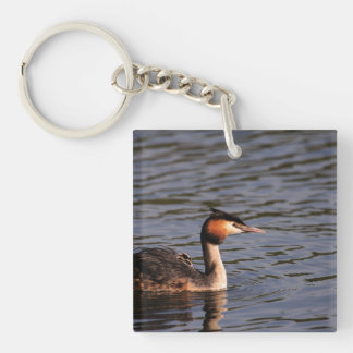 Great crested grebe with chick on back keychain