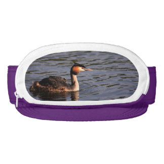 Great crested grebe with chick on back visor