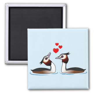 Great Crested Grebes in Love 2 Inch Square Magnet