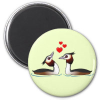 Great Crested Grebes in Love Round Magnet
