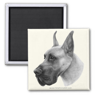 Great Dane 2 Inch Square Magnet