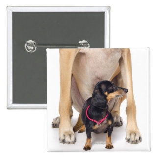 Great Dane and Dachshund portrait Pinback Button