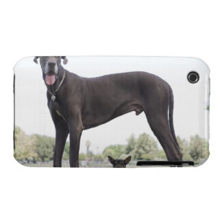 Great dane and small mixed-breed dog iPhone 3 case