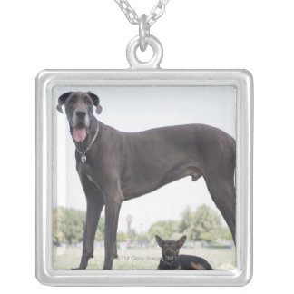Great dane and small mixed-breed dog silver plated necklace