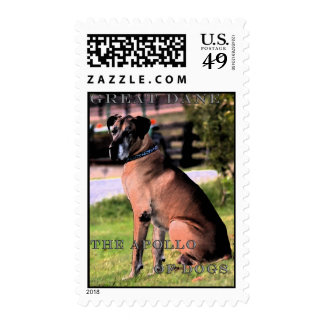 Great Dane, Apollo Of Dogs Postage Stamps