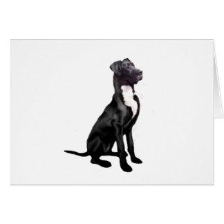 Great Dane (B) - Black (natural eared) Greeting Cards