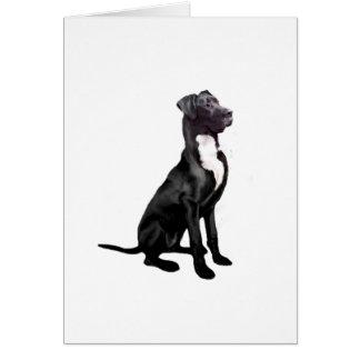 Great Dane (B) - Black (natural eared) Greeting Card