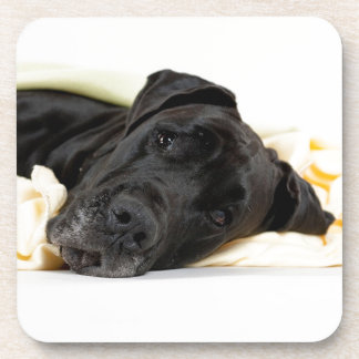 Great dane - black German Dogge - black Coaster