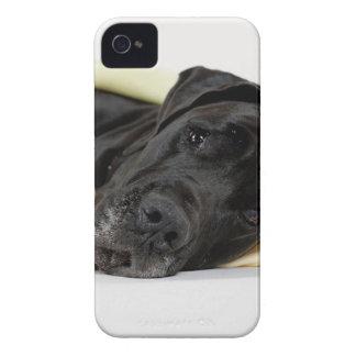 Great dane - black/German Dogge - black iPhone 4 Case