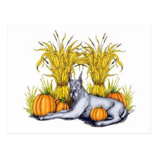 Great Dane Blue Harvest Postcard