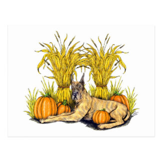 Great Dane Brindle Harvest Postcard