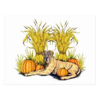Great Dane Brindle Harvest UC Postcard