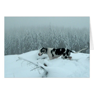 """Great Dane """"Cash"""" In The Snow Stationery Note Card"""