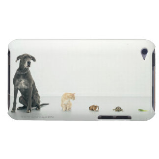 Great Dane, cat, guinea pig, tortoise and slug iPod Case-Mate Case