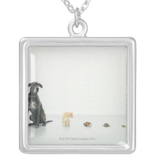 Great Dane, cat, guinea pig, tortoise and slug Silver Plated Necklace