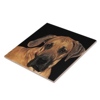 Great Dane Ceramic Tile