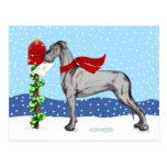 Great Dane Christmas Mail Black UC Postcard