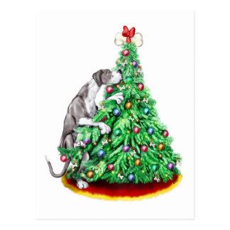 Great Dane Christmas Reach Goals Mantle UC Postcard