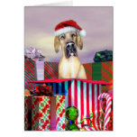 Great Dane Christmas Surprise Fawn UC Greeting Card