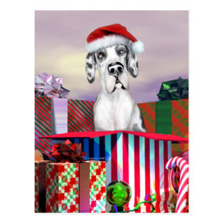 Great Dane Christmas Surprise Harle UC Postcard
