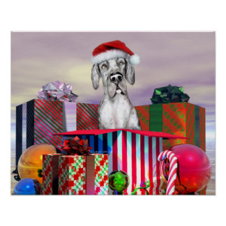 Great Dane Christmas Surprise Merle UC Posters