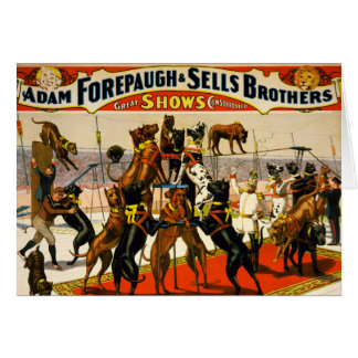 Great Dane Circus Show Greeting Cards