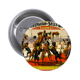 Great Dane Circus Show Pinback Button