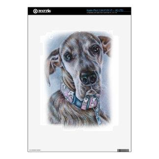 Great Dane Dog Drawing Design iPad 3 Decals